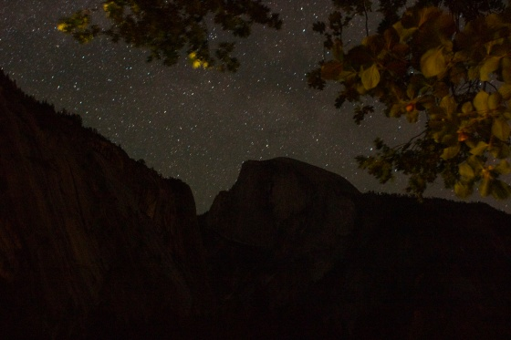 Half Dome, Leaves, and Stars